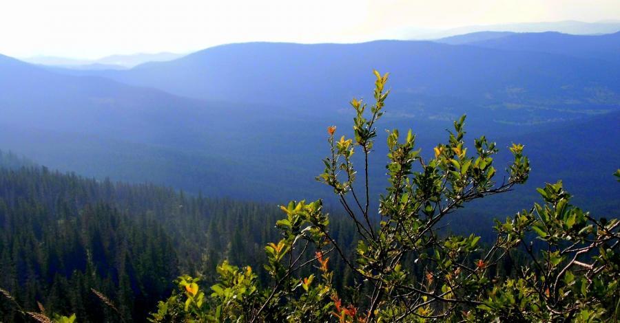 Na szlaku Diablaka - Babia Góra - zdjęcie