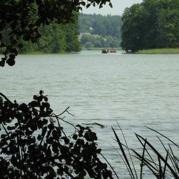 Wokół jeziora Szeląg Mały, czyli Stare Jabłonki i wysokie pokrzywy - zdjęcie